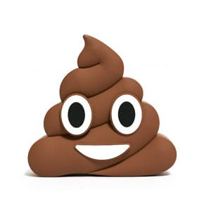 Power bench Emoji Poo